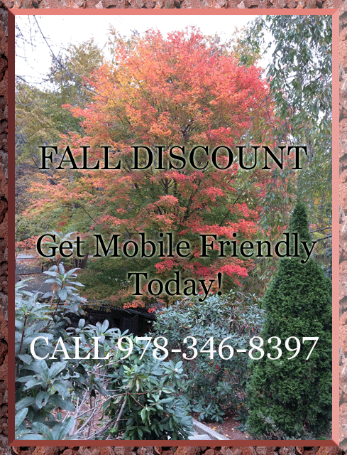 Fall Discount on Most Web Design Services 978-346-8397