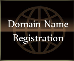 Let us register your domain name for you and make sure you never lose it by adding Id Protect